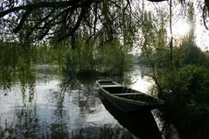rivière du Loiret